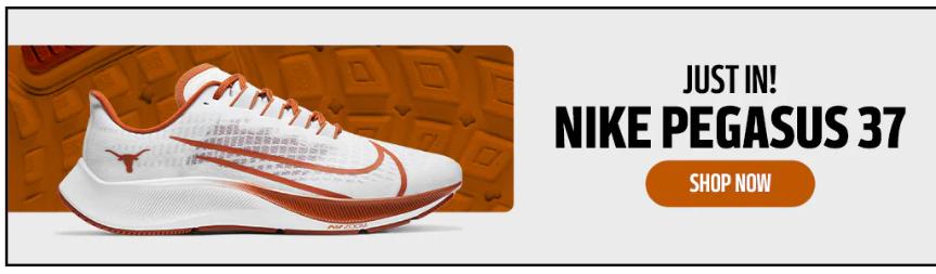 2020 Nike Pegasus Texas Longhorns